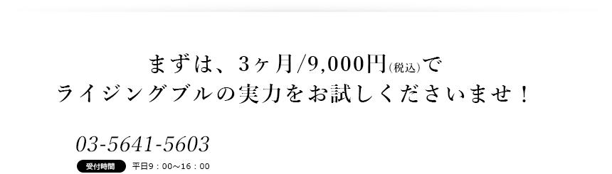 まずは3ヶ月/9,000円~の会員登録でライジングブルの実力をお試しくださいませ!